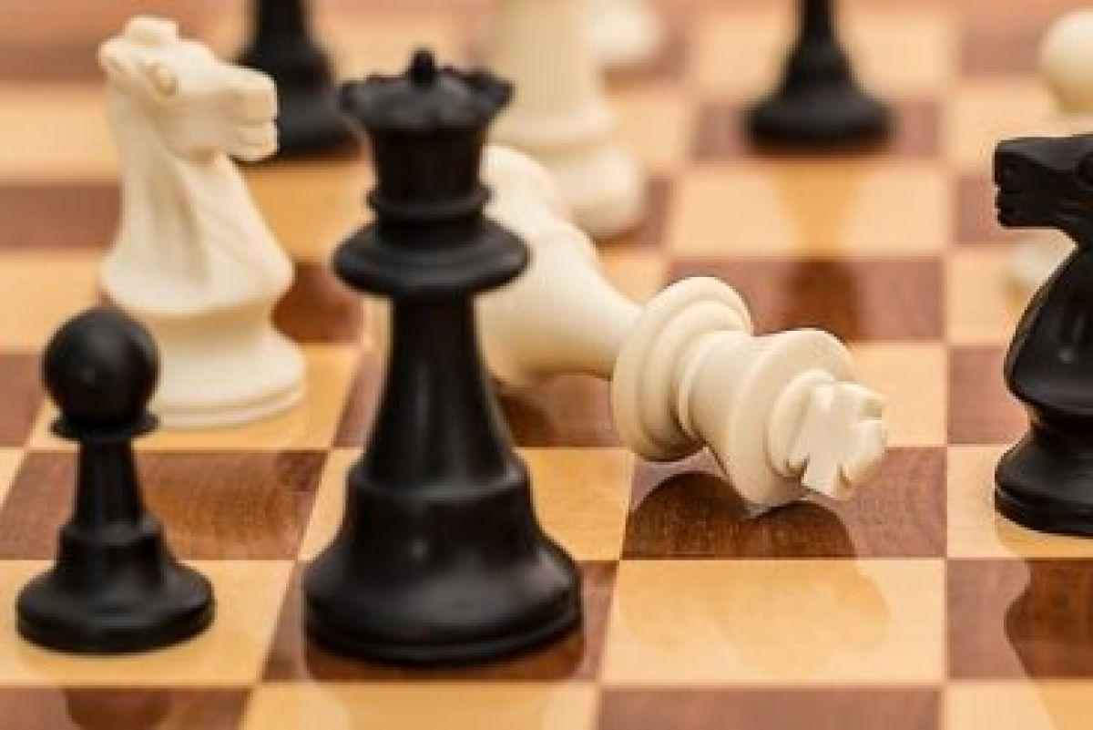 Succes voor onze schakers