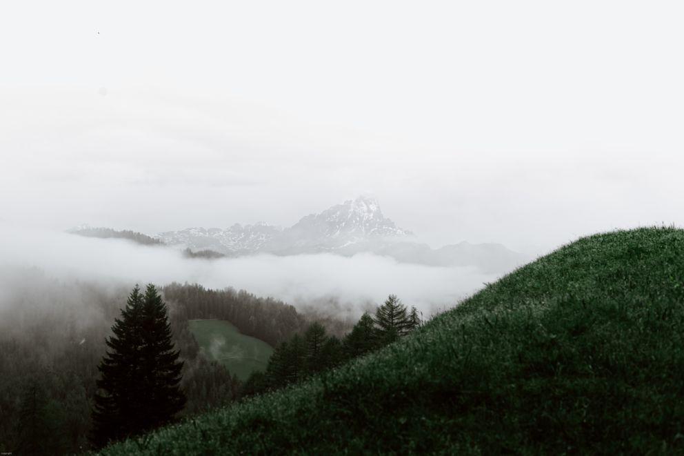 pexels-eberhard-grossgasteiger-4406286.jpg