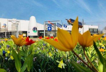 Tulpen voor space expo