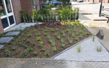 Tuin Laten Aanleggen : Aanleggen budget tuin in apeldoorn van triest